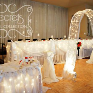 White Sheer Backdrop, Head Table, Ceremony (or Cake Table), and Arch with Twinkle Lights to Add a Fairytale Touch