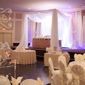 A Cream and Light Pink Backdrop behind Canopy